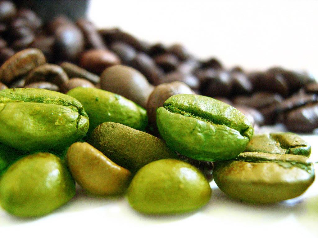 fare il chicco di caffè verde aiuta a perdere peso