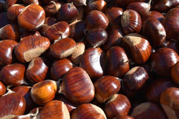 Benefici delle castagne
